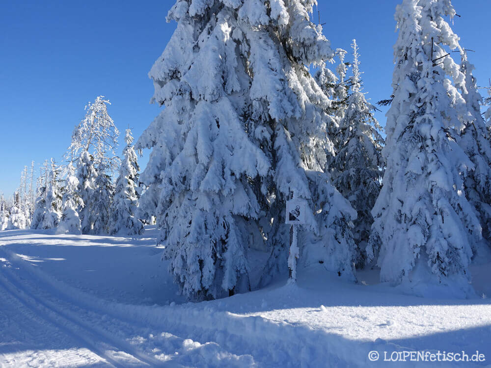 Winterwonderland in Sumava