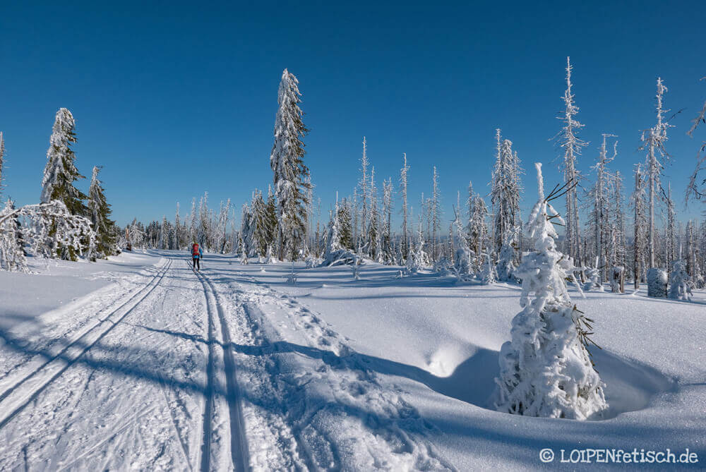 Schnee soweit das Auge reicht. Foto: KulturNatur.de